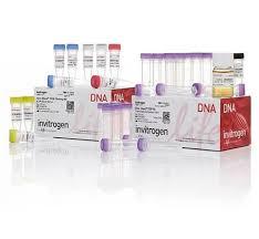 مواد، بافرها، محلول ها و ملزومات PCR